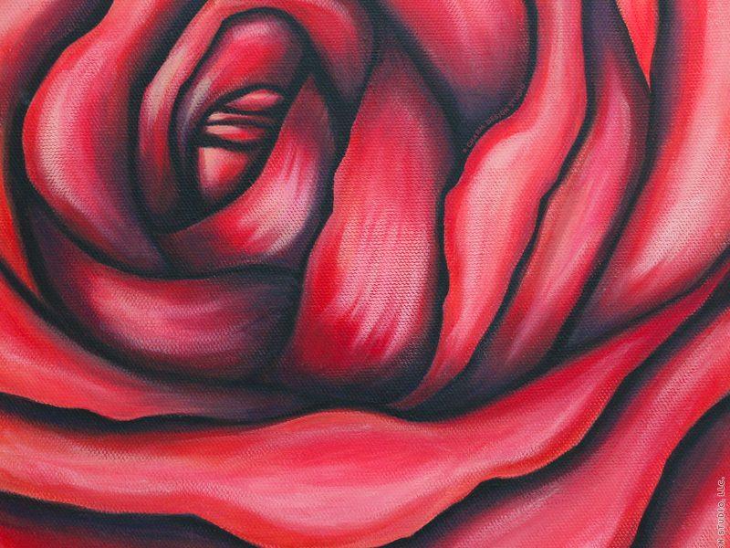 Botanicals & Beauty by Charm Design Studio — rose