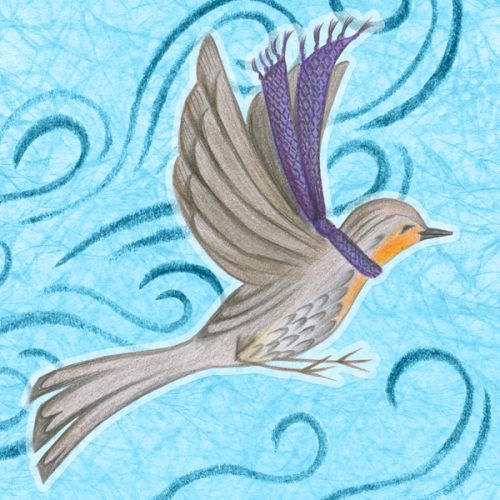 "Feathers in Frost design ""winter robin"" illustration by Charm Design Studio"